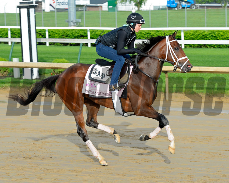 Rachel's Valentina<br /> Works at Churchill Downs on May 1, 2016, in Louisville, Ky.