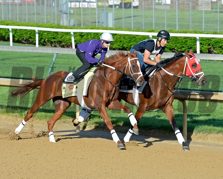 Horses on track at Churchill Downs in Louisille, Ky., on April 29, 2016. Oscar Nominated with Julien Leparoux