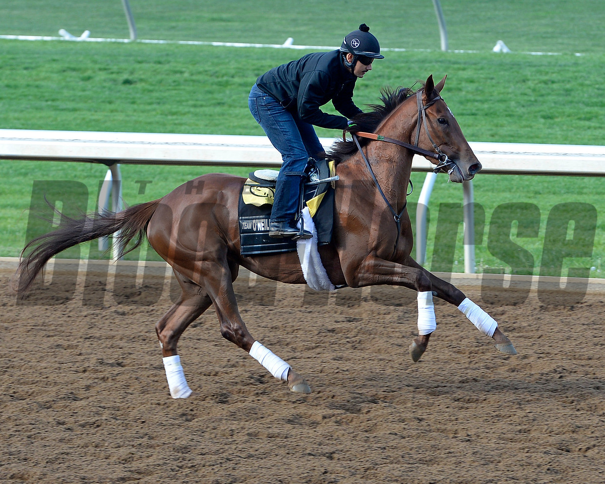 Over Sea working in 5 furlongs in 1:02.20.<br /> Morning works and scenes at Keeneland in Lexington, Ky., on April 23, 2016.