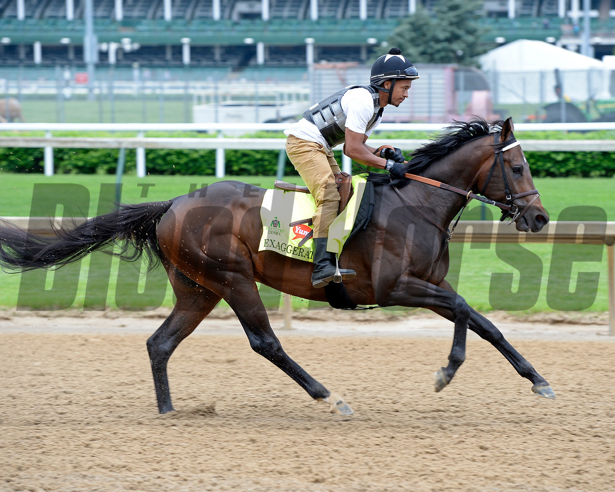 Exaggerator<br /> Works at Churchill Downs on May 3, 2016, in Louisville, Ky.
