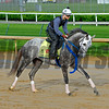 Creator<br /> Works at Churchill Downs on May 1, 2016, in Louisville, Ky.