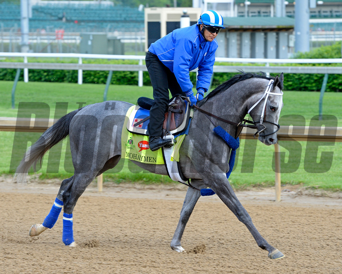 Mohaymen<br /> Works at Churchill Downs on May 4, 2016, in Louisville, Ky.