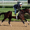 Shagaf Churchill Downs Chad B. Harmon
