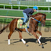 Horses on track at Churchill Downs in Louisille, Ky., on April 29, 2016.Gun Runner