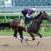 Shagaf<br /> Works at Churchill Downs on May 3, 2016, in Louisville, Ky.