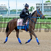 Cathryn Sophia<br /> Works at Churchill Downs on May 4, 2016, in Louisville, Ky.