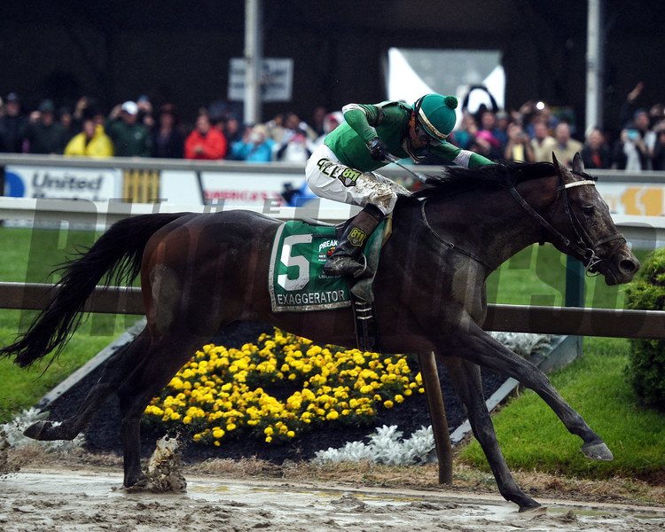 Exaggerator wins the 2016 Preakness.<br /> Dave Harmon Photo