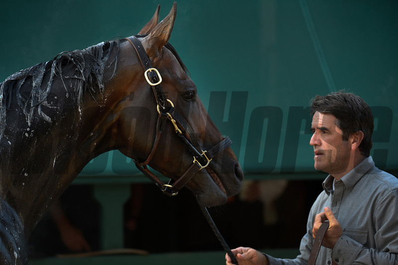 Trainer Keith Desormeaux holds Kentucky Derby Runner-up Exaggerator Friday morning May 20, 2016 after morning exercise in preparation for Saturday's 141st running of the Preakness Stakes at Pimlico Race Course in Baltimore, MD.  Photo by Skip Dickstein