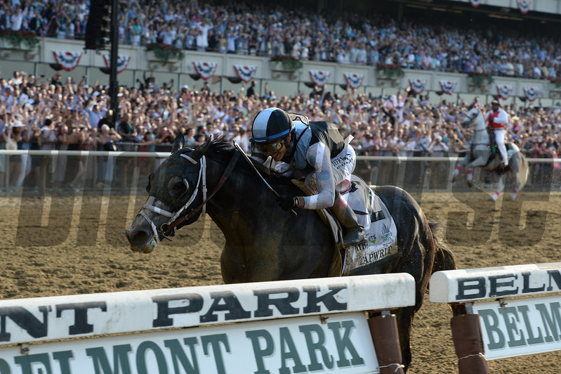 Tapwrit wins the 2017 Belmont Stakes<br /> Coglianese Photos/Joe Labozzetta