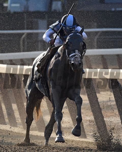 Tapwrit wins the 2017 Belmont Stakes<br /> Coglianese Photos/Robert Mauhar