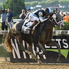Tapwrit wins the 2017 Belmont Stakes<br /> Coglianese Photos/David Alcosser