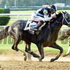Tapwrit wins the Belmont Stakes (G1) at Belmont Park on June 10 2017