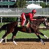 Classic Empire Kentucky Derby Chad B. Harmon