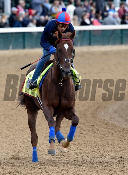 Irish War Cry gallops at Churchill Downs May 3, 2017 in Louisville, KY.  Photo by Skip Dickste