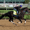Untrapped Kentucky Derby Chad B. Harmon