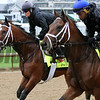 Patch Master Plan Kentucky Derby Chad B. Harmon