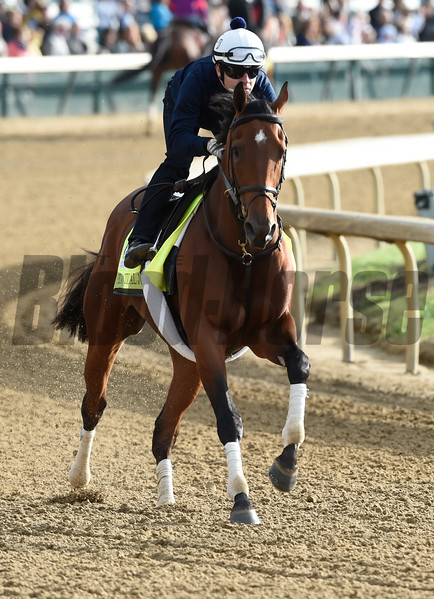 Practical Joke gallops at Churchill Downs May 3, 2017 in Louisville, KY.  Photo by Skip Dickste