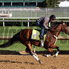 Irap Kentucky Derby Chad B. Harmon
