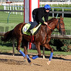 Gunnevera Kentucky Derby Chad B. Harmon