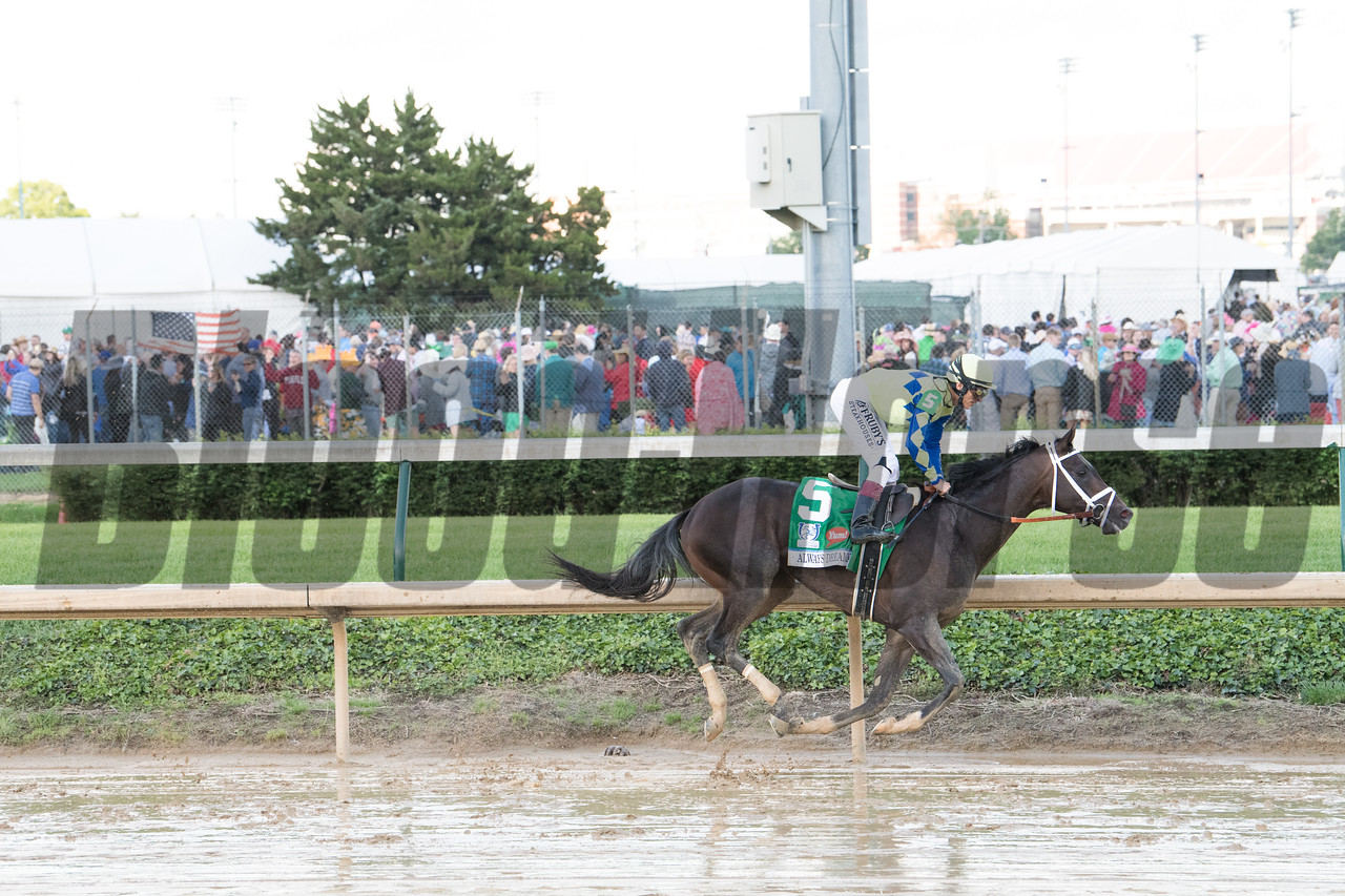 Always Dreaming with John Velazquez up gallops out after winning the 143rd Kentucky Derby