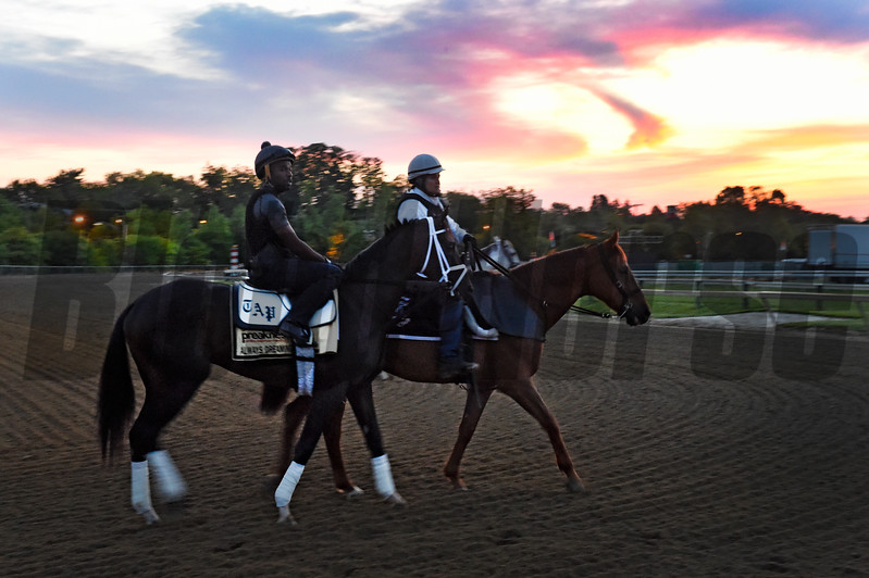 Always Dreaming goes out for his morning exercise with his exercise rider Nick Bush two days before the Preakness Stakes at Pimlico Race Course Thursday May 18, 2017 in Baltimore, Maryland.  Photo by Skip Dickstein