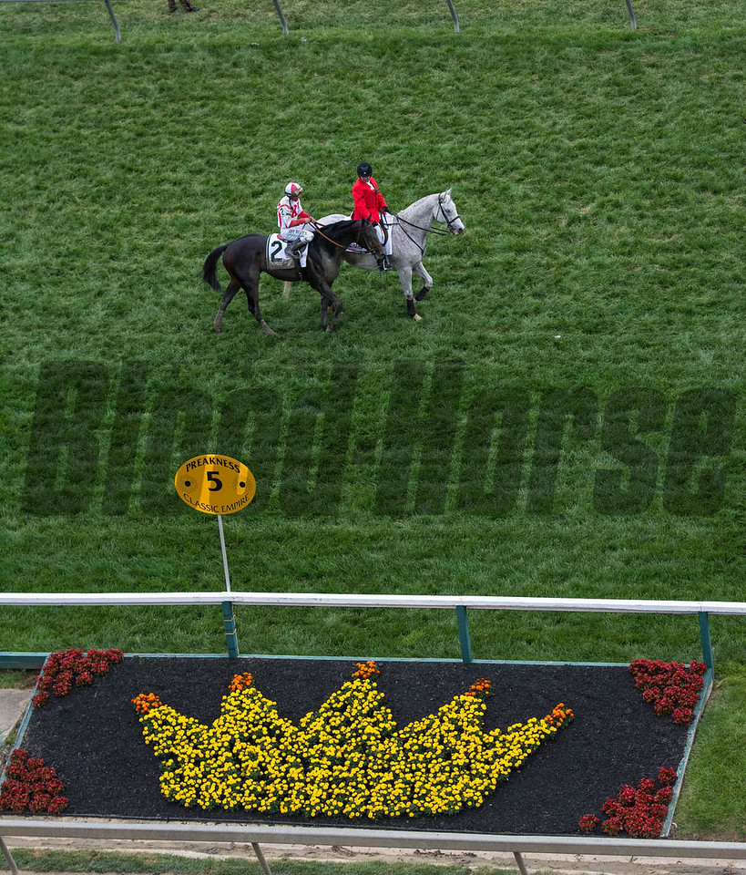 Cloud Computing going past the crown of Black Eyed Susans after winning the Preakness