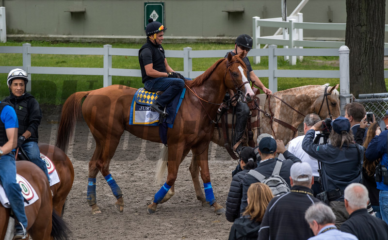 Justify leaves the track after his first gallop on the main track at Belmont Race Course Thursday June 7, 2018 in Elmont, N.Y. Photo by Skip Dickstein