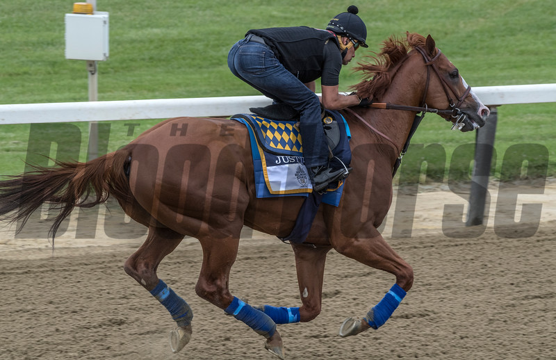 Justify goes to the track for first time at Belmont Race Course Thursday June 7, 2018 in Elmont, N.Y. Photo by Skip Dickstein