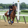Justify - Belmont Park, June 7, 2018<br /> Coglianese Photos/Zoe Metz