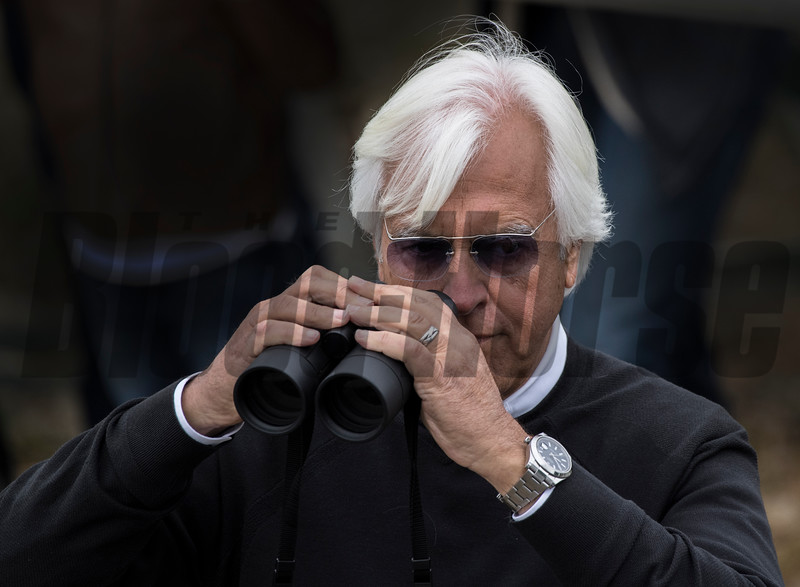 Trainer Bob Baffert keeps an eye (or two) on Justify as he goes to the track for first time at Belmont Race Course Thursday June 7, 2018 in Elmont, N.Y. Photo by Skip Dickstein