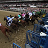 Starting Gate Remote Belmont Stakes Chad B. Harmon