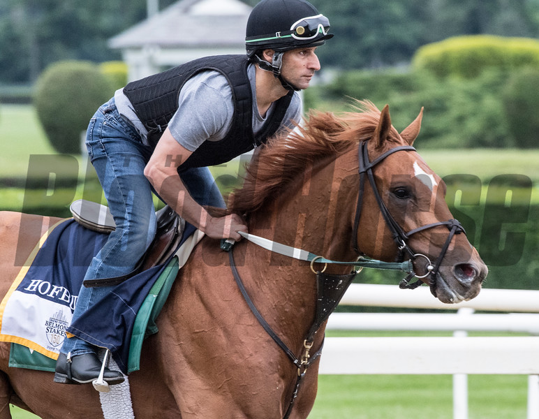 Hofburg at Belmont Race Course Thursday June 7, 2018 in Elmont, N.Y. Photo by Skip Dickstein