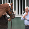 Justify gets the once over by trainer Bob Baffert after arriving from Louisville for his appearance in his attempt at a Triple Crown in Saturday's 150th Belmont Stakes Wednesday June 6, 2018 in Elmont, N.Y.  Photo by Skip Dickstein