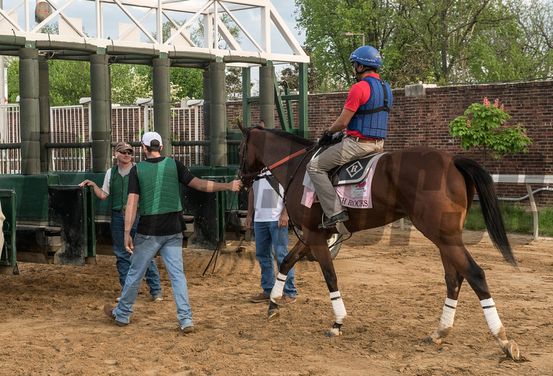 KY Oaks entrant Coach Rocks schools at the starting gate at Churchill Downs Wednesday May 2, 2018. Photo by Skip Dickstein