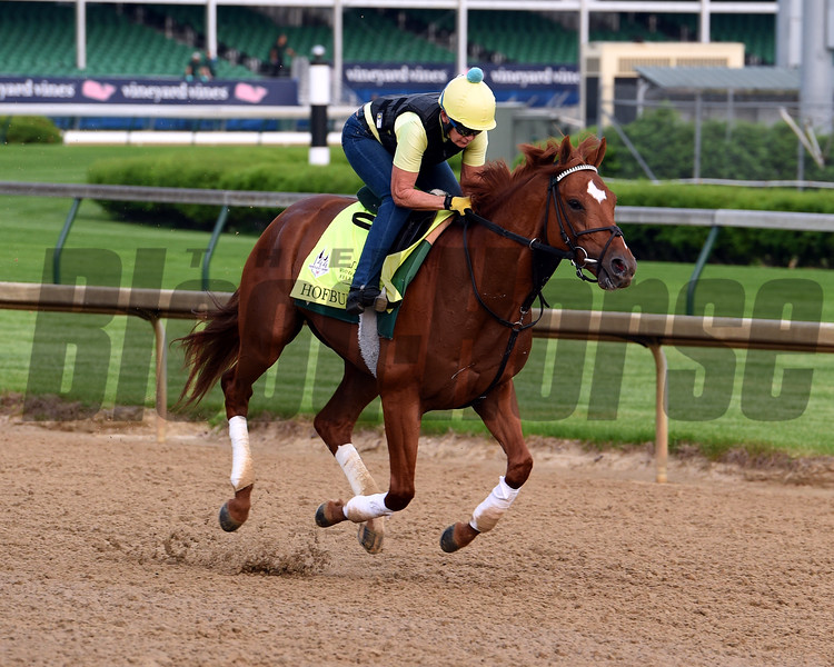 Hofburg 2018 Kentucky Derby Week<br /> Dave Harmon Photo
