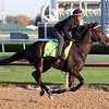 My Boy Jack Kentucky Derby Chad B. Harmon