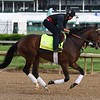 Blended Citizen 2018 Kentucky Derby Week<br /> Dave Harmon Photo