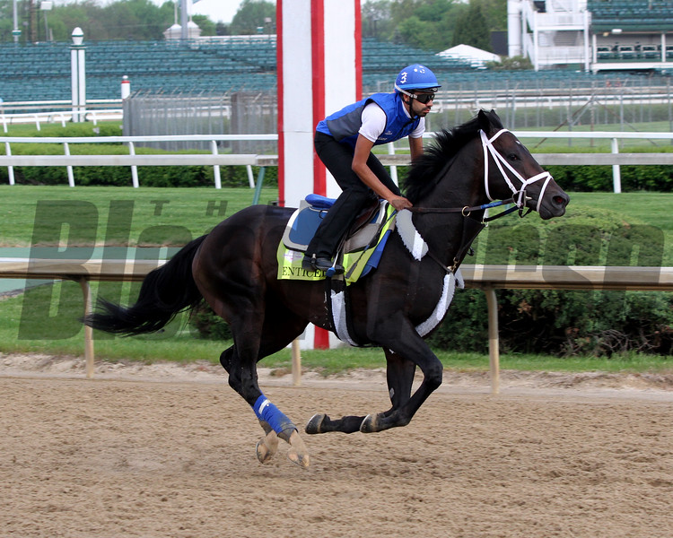 Enticed Kentucky Derby Chad B. Harmon