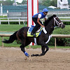 Enticed Kentucky Derby Chad B. Harmon