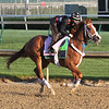 Heavenhasmynikki Kentucky Oaks Chad B. Harmon