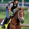 VINO ROSSO training at Churchill Downs