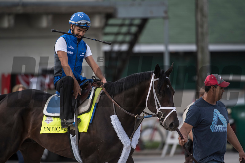 Enticed goes to the track for a morning gallop at Churchill Downs Wednesday May 2, 2018. Photo by Skip Dickstein