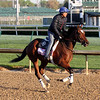 Coach Rocks Kentucky Oaks Chad B. Harmon