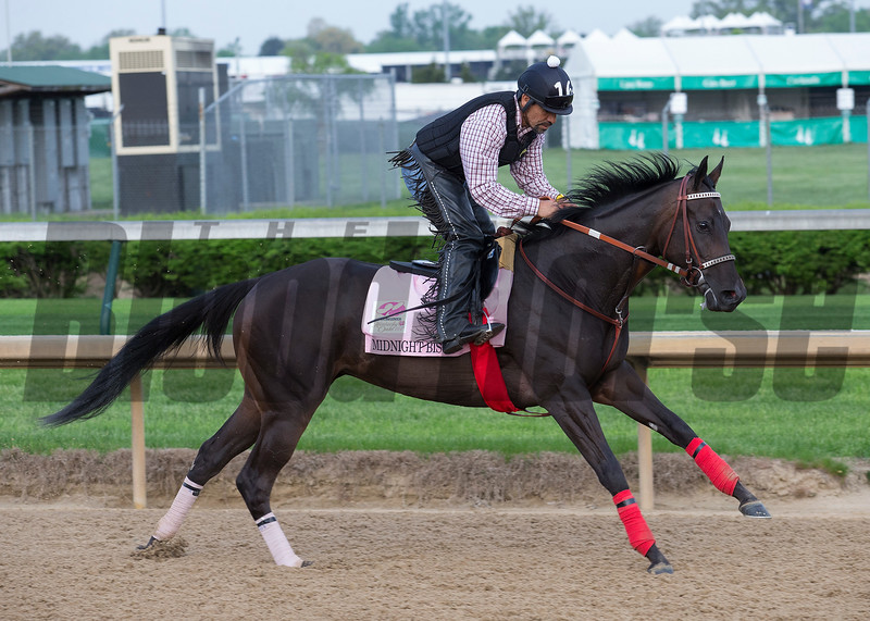 Kentucy Oaks contender Midnight Bisou in the morning of May 3, 2018 at Churchill Downs.