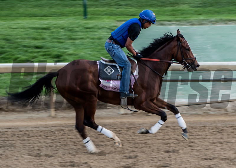 Coach Rocks gallops Thursday May 3, 2018 at Churchill Downs in preparation for the KY Oaks.  Photo by Skip Dickstein