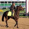 My Boy Jack Kentucky Derby Chad B. Harmon