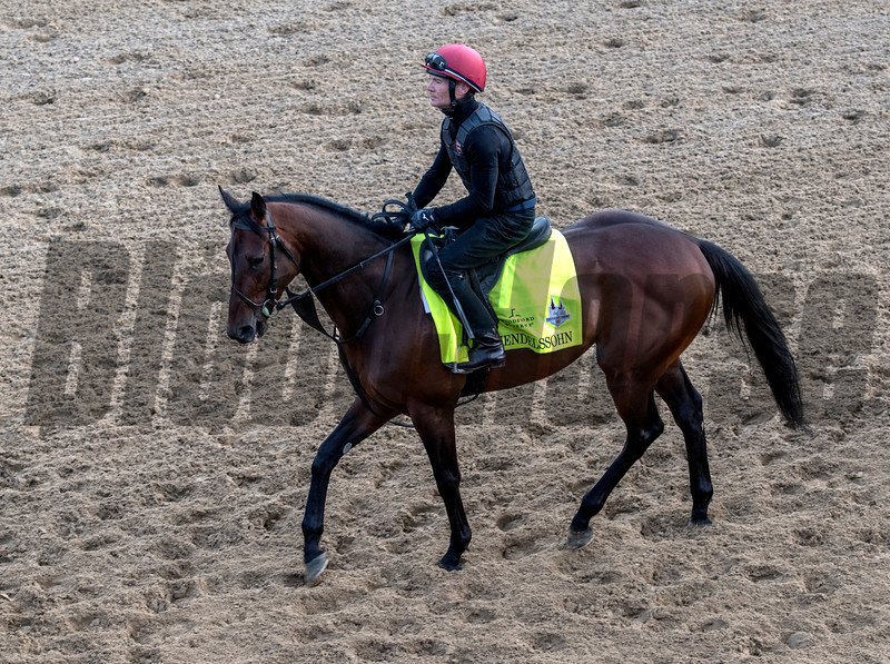 Mendelssohn makes his first appearance at Churchill Downs.   Photo by Skip Dickstein