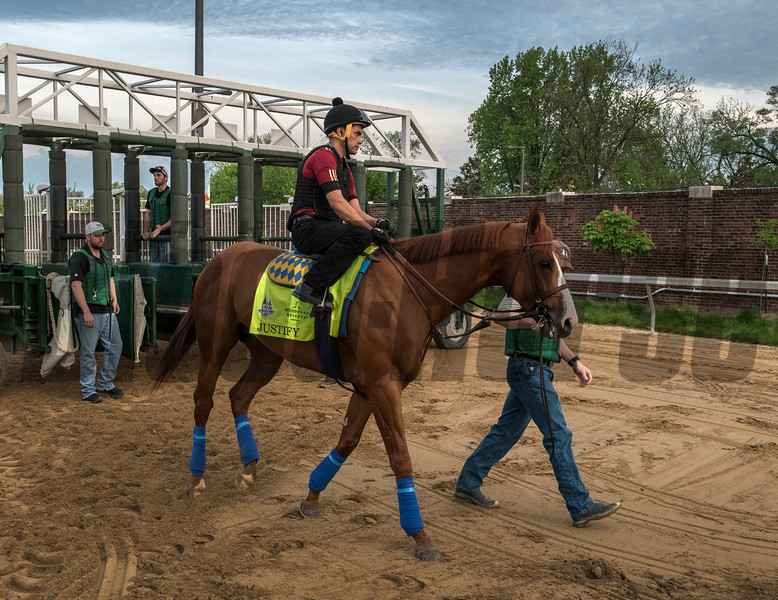 Justify schools at the gate at Churchill Downs Wednesday May 2, 2018. Photo by Skip Dickstein