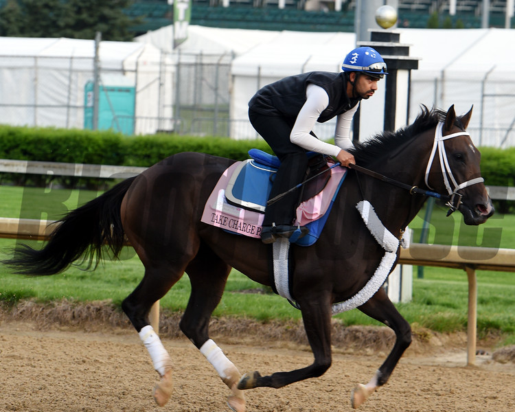 Take Charge Paula 2018 Kentucky Oaks Week<br /> Dave Harmon Photo