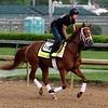 Vino Rosso 2018 Kentucky Derby Week<br /> Dave Harmon Photo